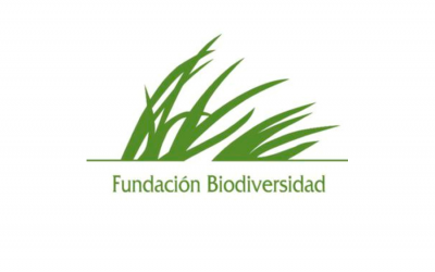 El CSIC inicia en Vigo tres proyectos sobre ciencias marinas con la colaboración de la Fundación Biodiversidad